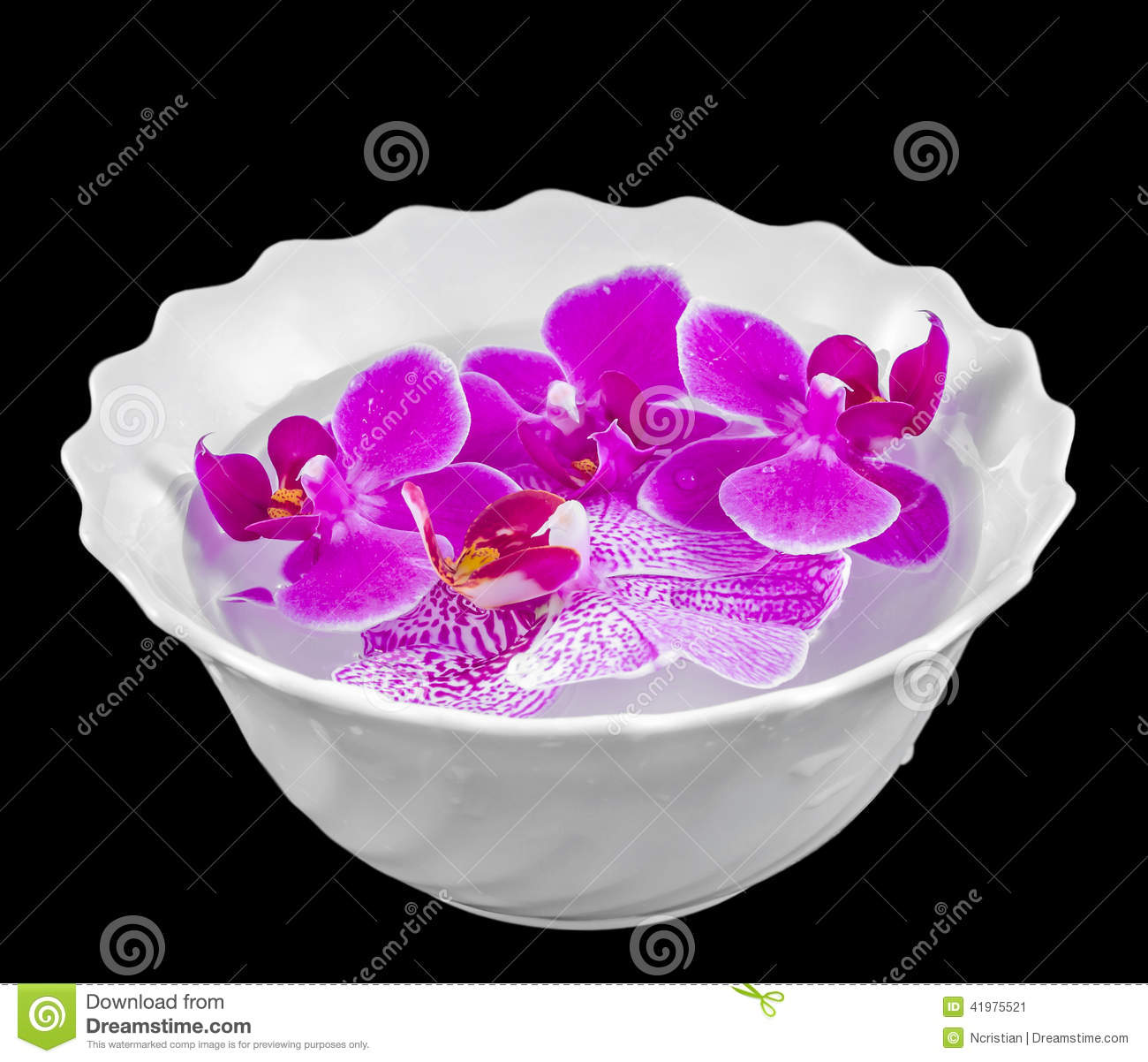 White Orchid Water Pink: Colored Orchid Flowers, Mauve, Pink, Purple In A White