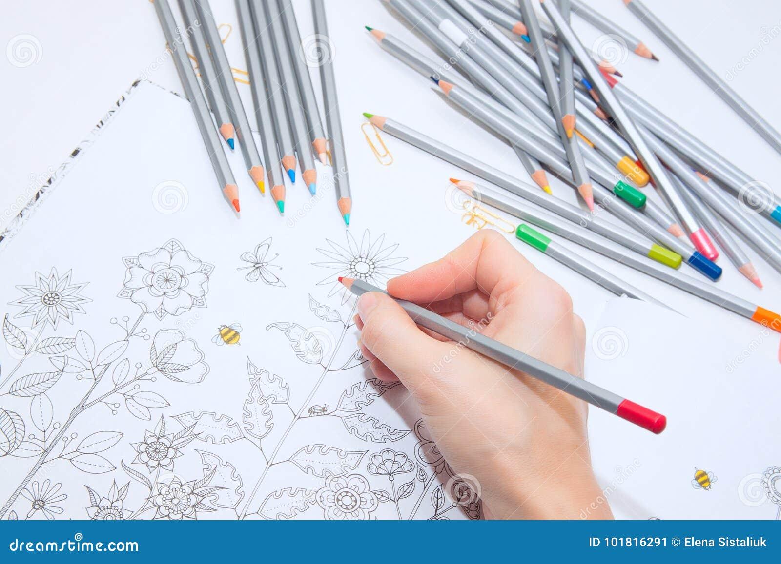 Colorer Antistress Con Le Matite Colorate La Ragazza Dipinge Un