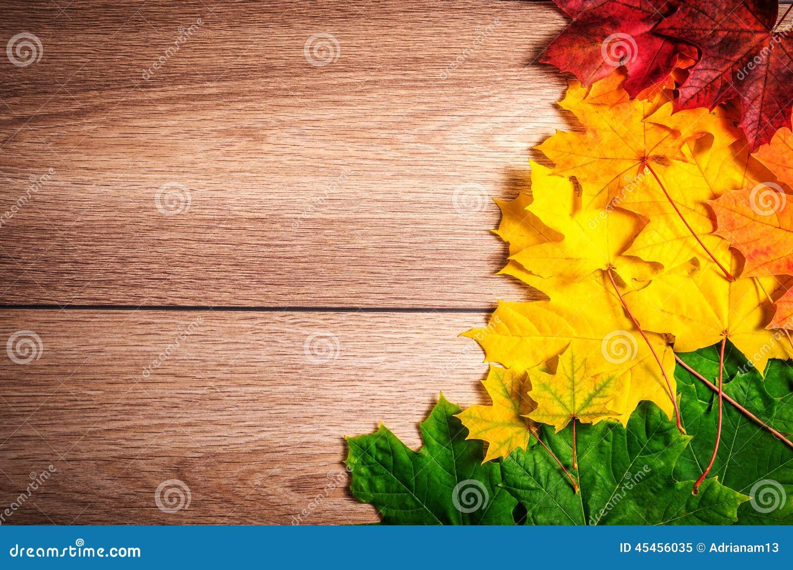 Colores 9 del otoño