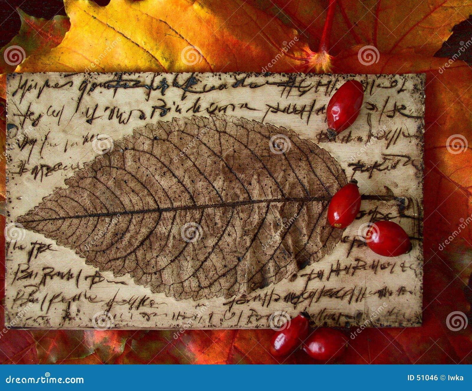 Colores del otoño - hoja y espino