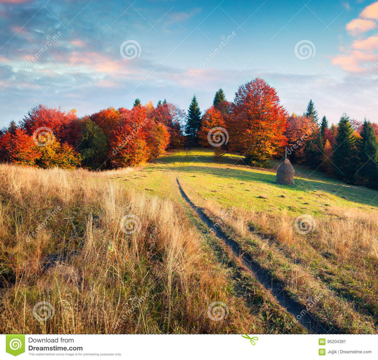 Colorful Autumn Evening In Carpathian Mountains. Stock