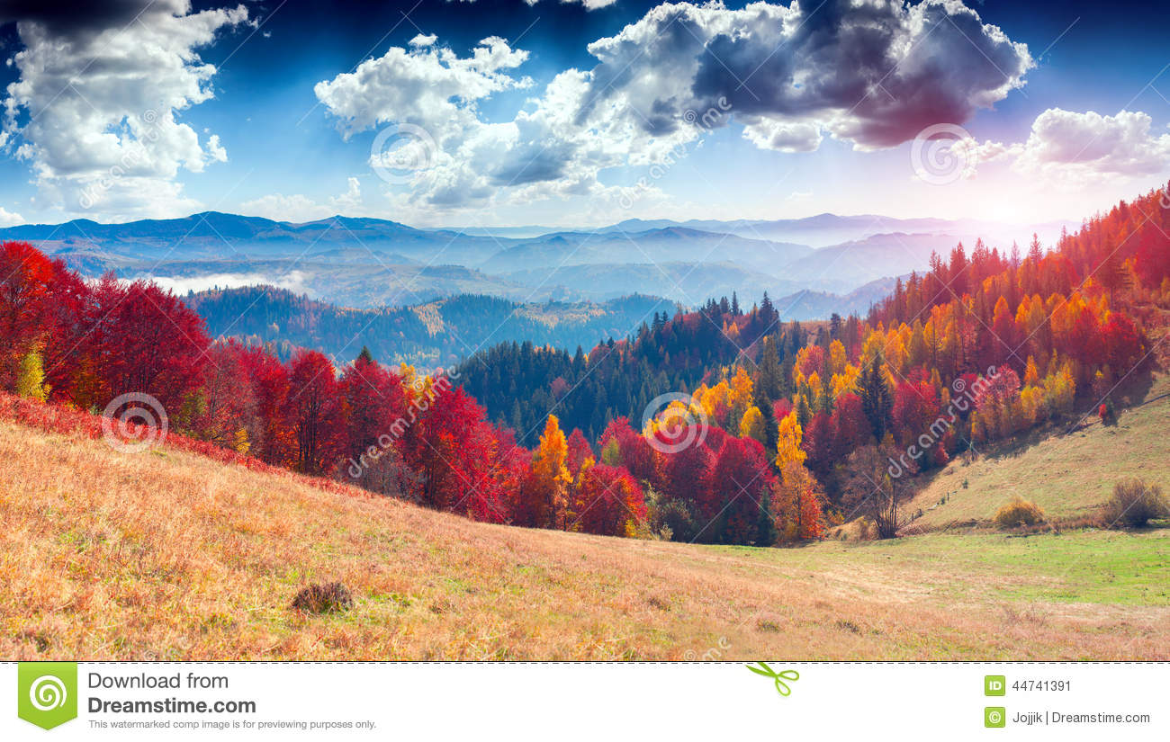 Colorful autumn landscape in the mountain village. Foggy morning