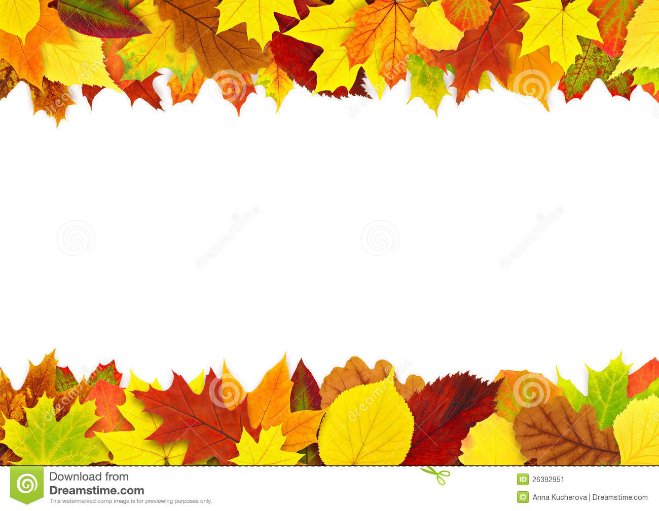 colorful autumn leaves border stock image image of birch tree vector image birch tree vector art