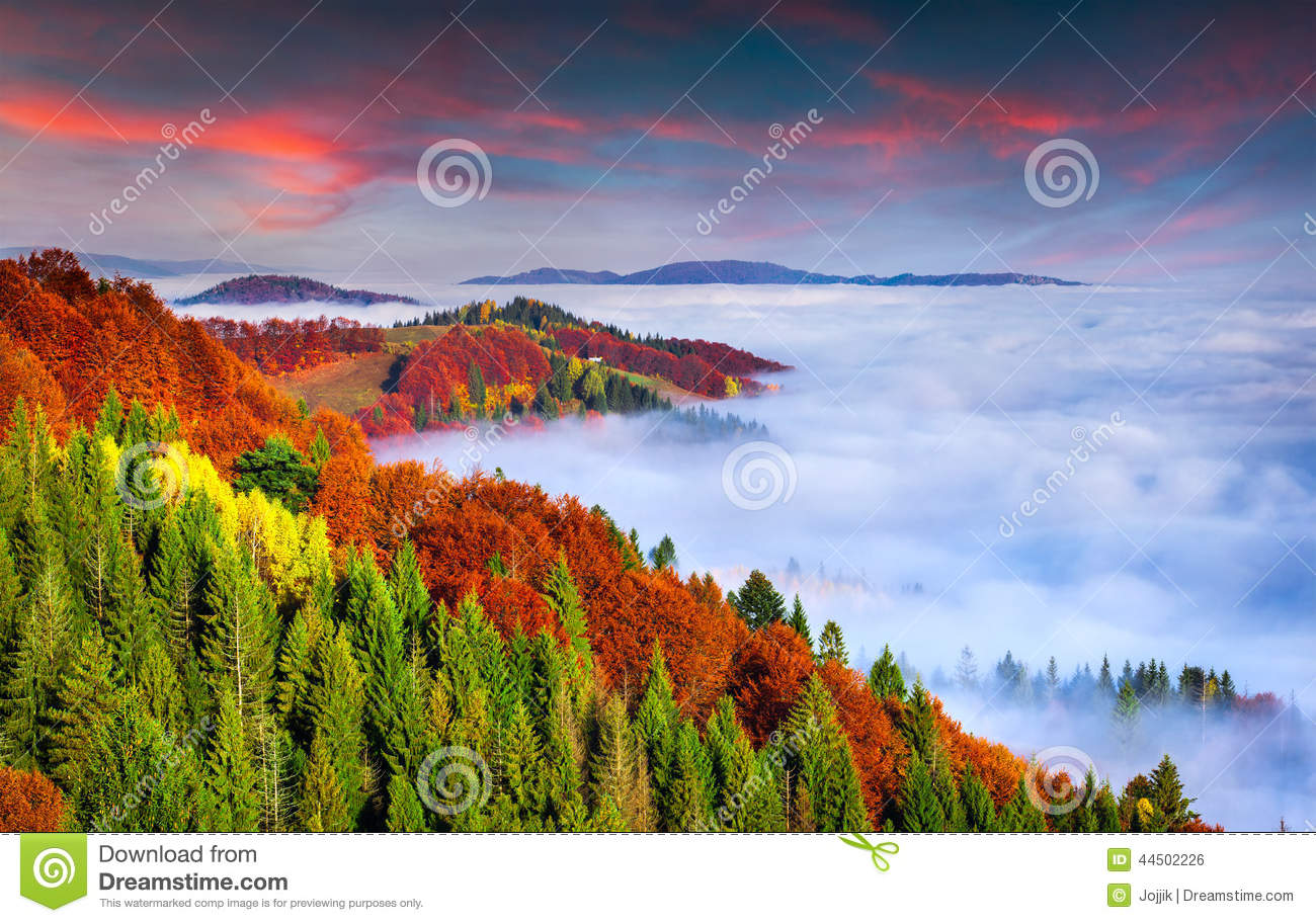 Nature Images 2mb: Colorful Autumn Morning In The Carpathian Mountains