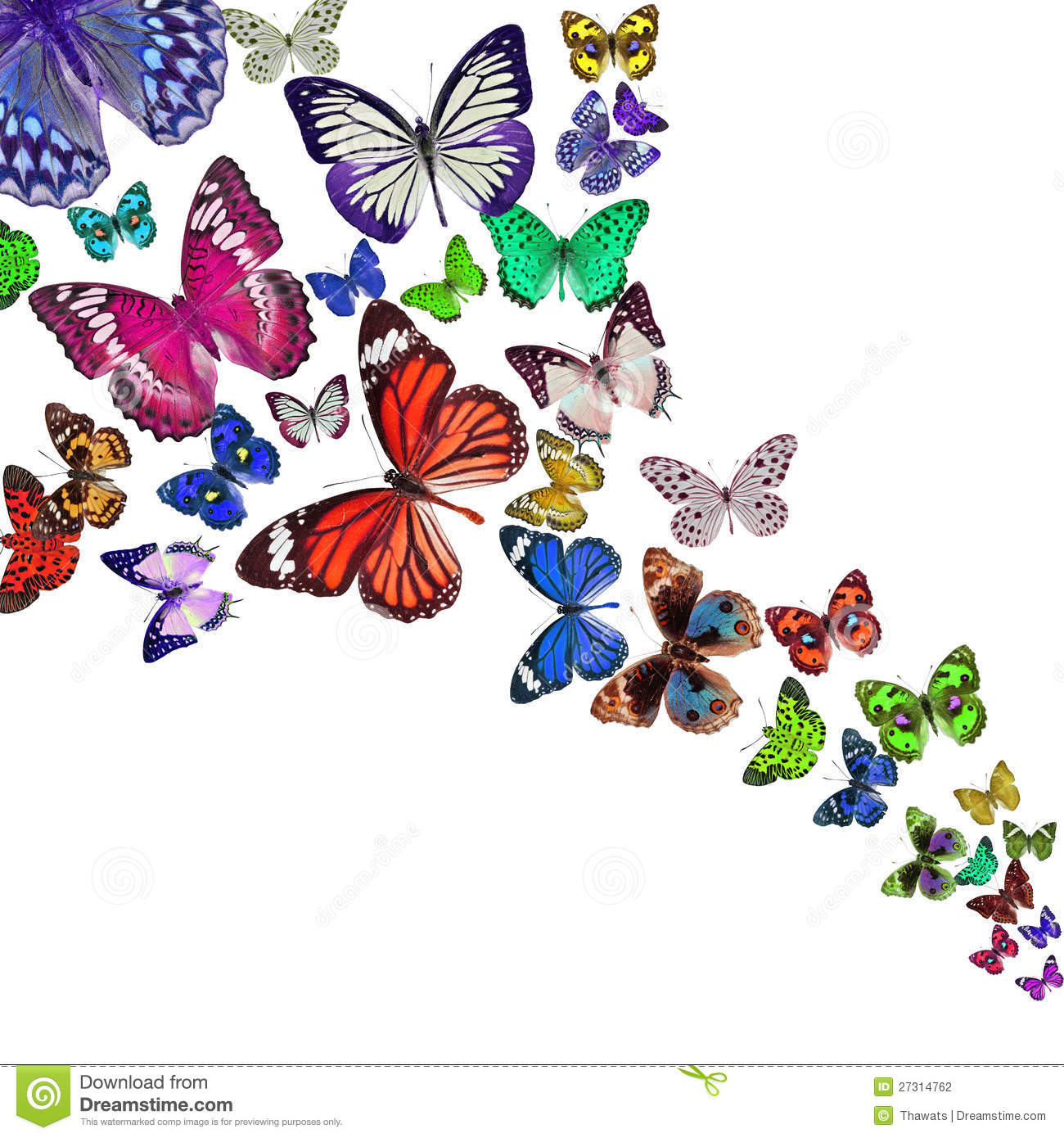 Colorful Background With Butterfly Stock Photo - Image of liquid ...