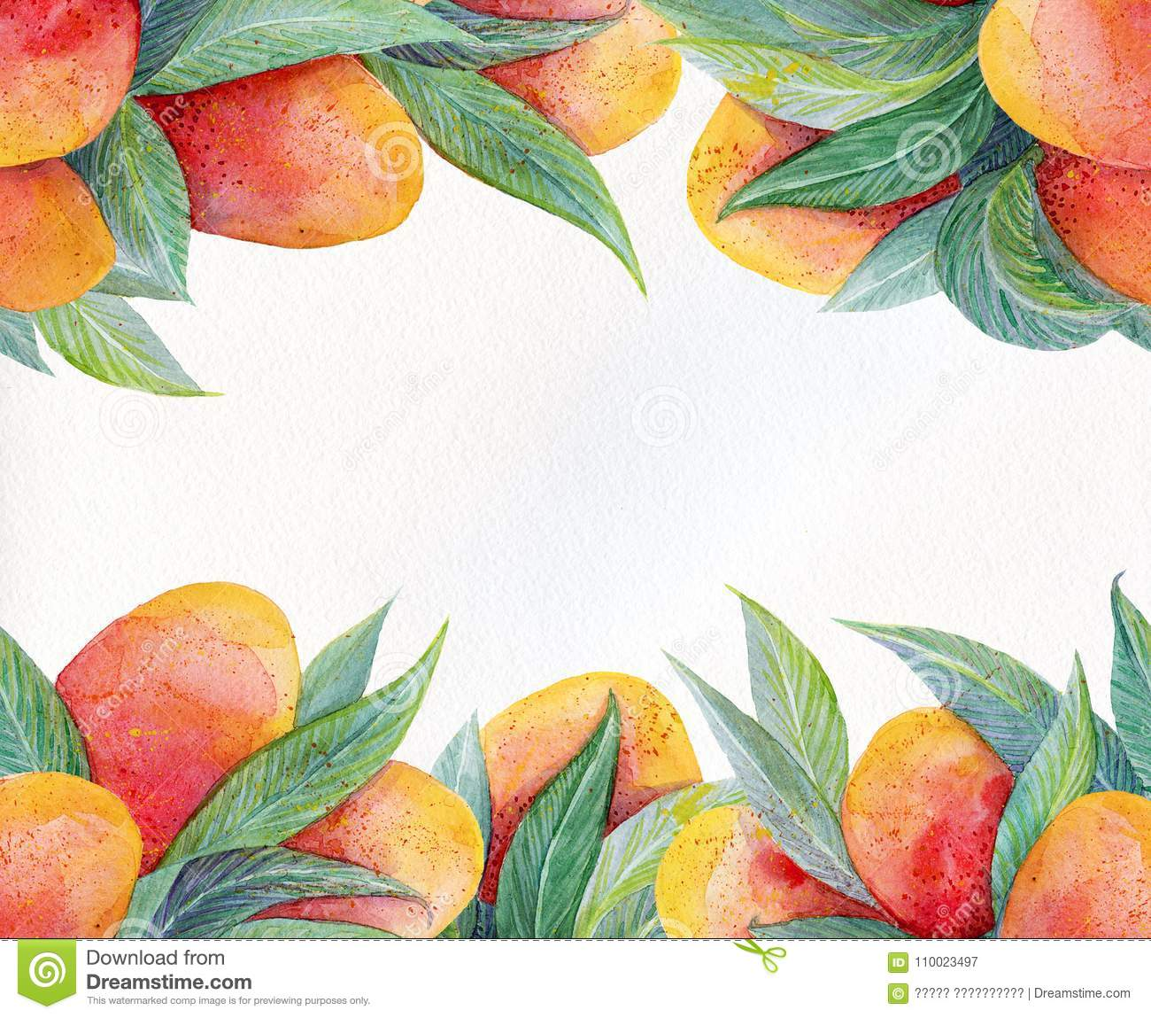 Colorful Background With Watercolor Fruits Mango Frame. Watercolor ...