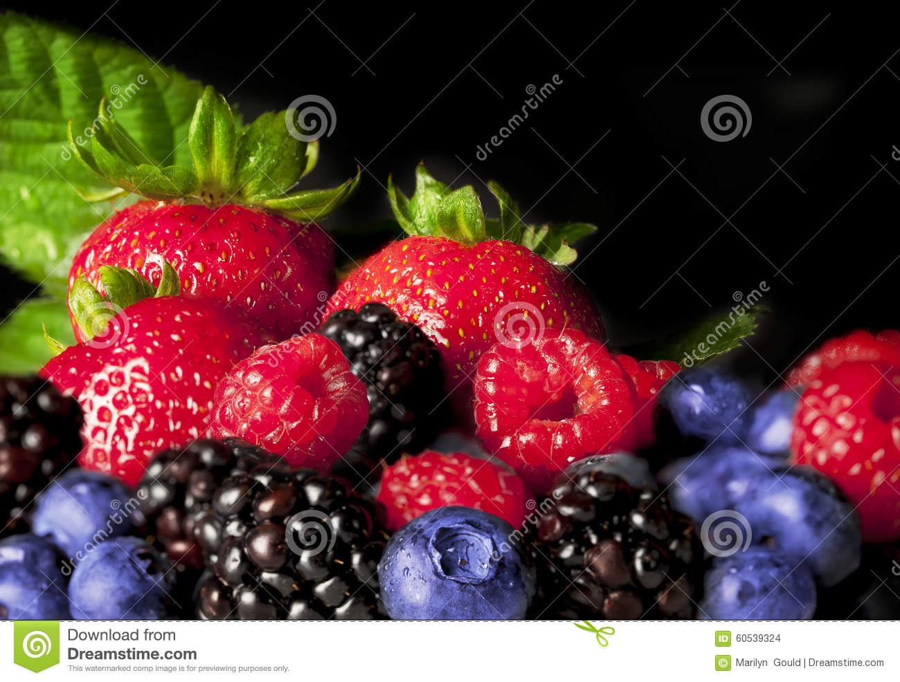 Colorful Berries
