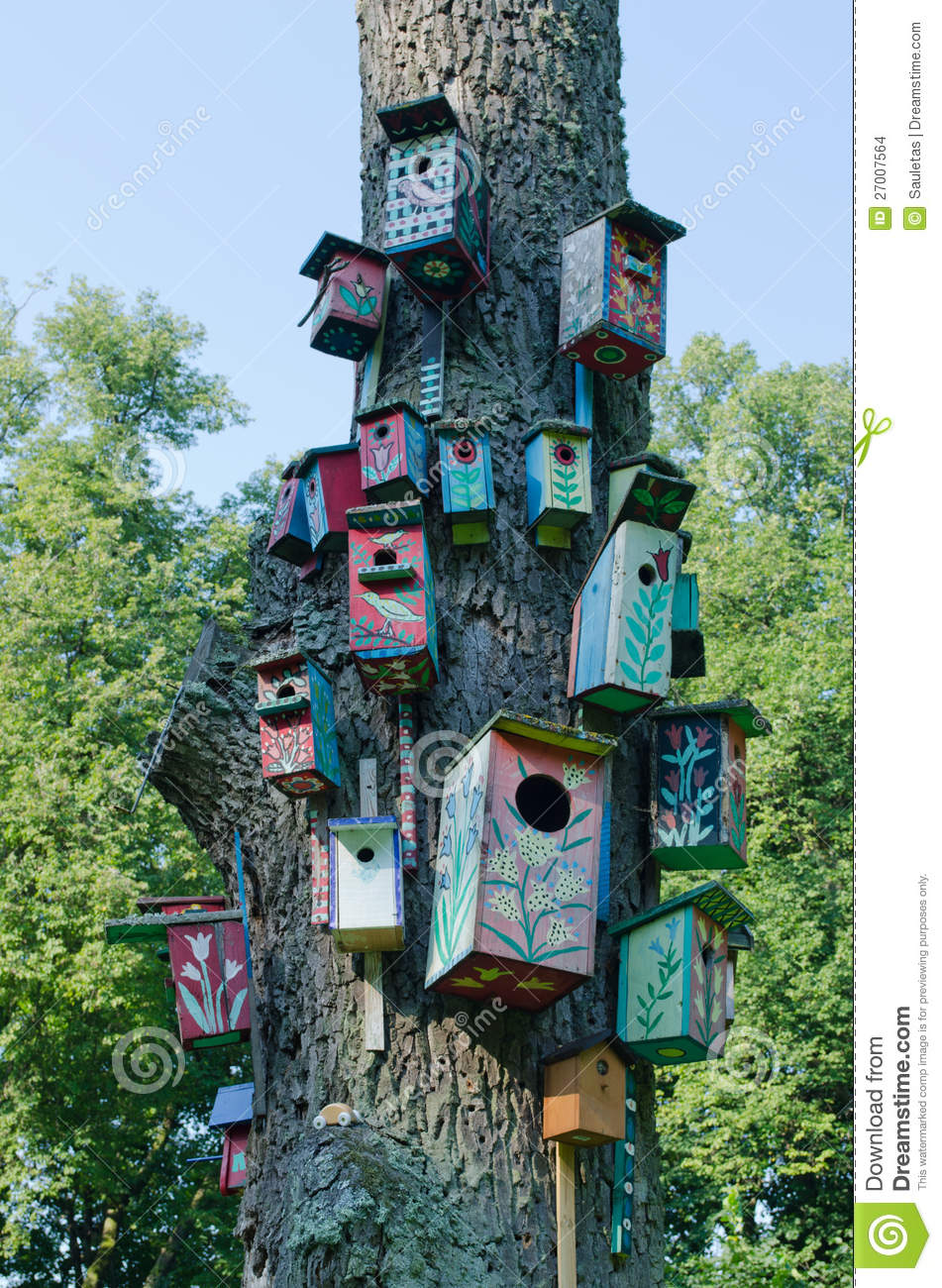 Colorful Bird Houses Nest Box Hang Old Tree Trunk Stock