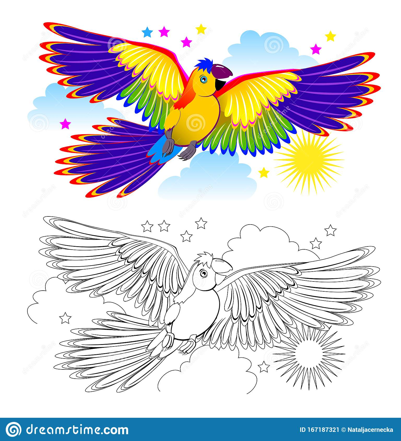 Colorful And Black And White Page For Coloring Book For Kids Fantasy Drawing Of Cute Parrot Flying On The Sky Stock Vector Illustration Of Adult Activity 167187321