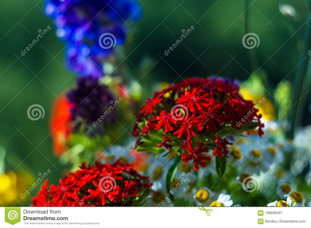 A bouquet of bright spring flowers of various types stock image download a bouquet of bright spring flowers of various types stock image image of decor mightylinksfo