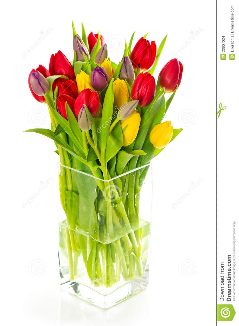 Colorful bouquet of fresh spring tulip flowers stock photo image download colorful bouquet of fresh spring tulip flowers stock photo image of gift arrangement izmirmasajfo