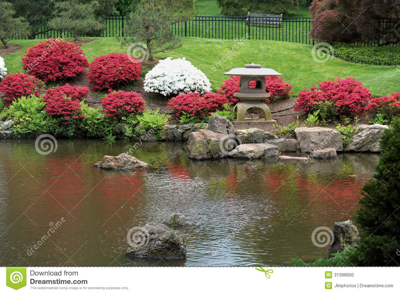colorful bushes and koi pond - Japanese Koi Garden