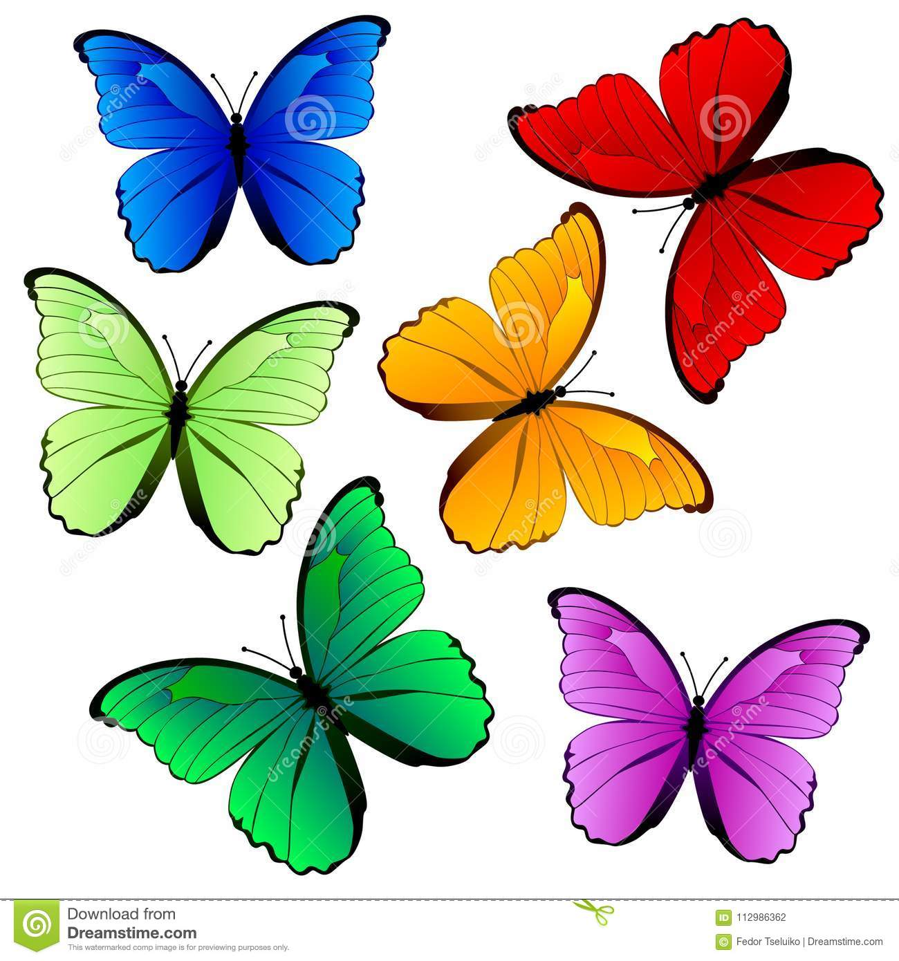 Colorful Butterfly Collection Isolated On White Stock ...