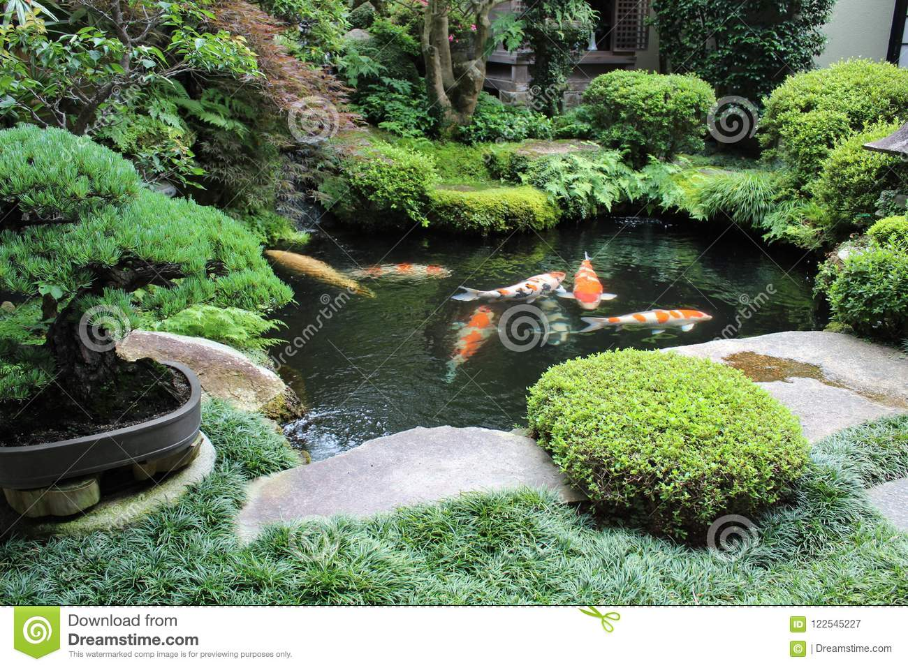 Colorful carps in a japanese garden house & Colorful Carps In A Japanese Garden House Stock Image - Image of ...