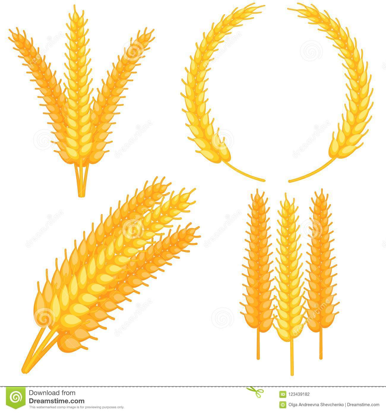 Colorful Cartoon Ripe Wheat Ear Set Stock Vector Illustration Of