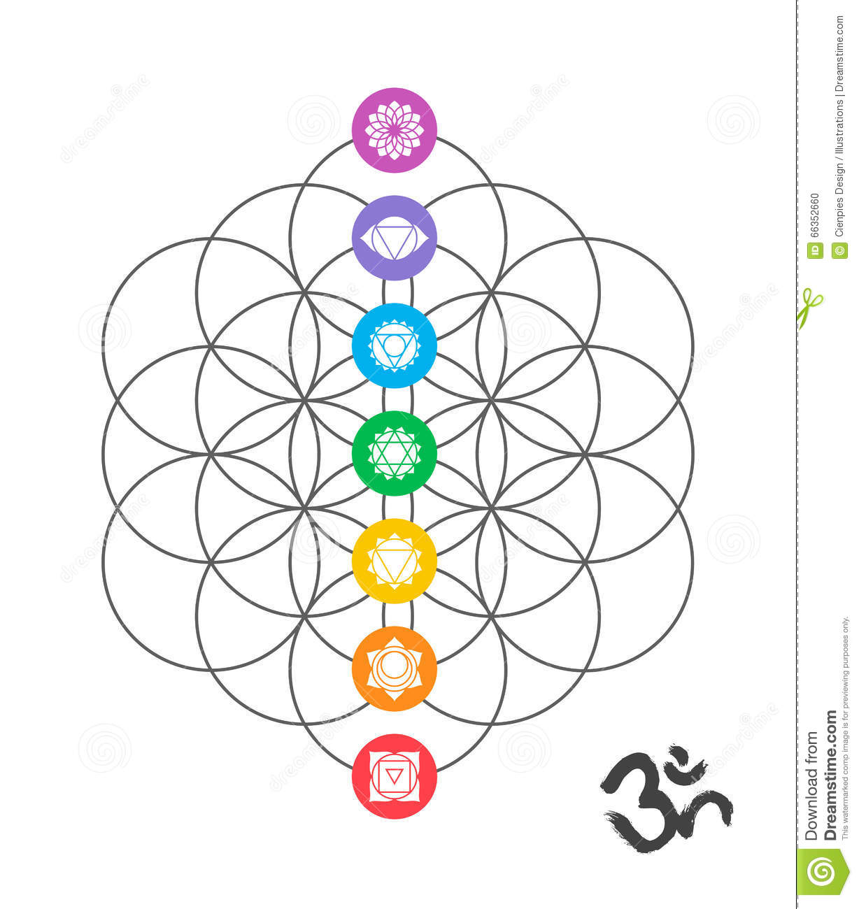 Colorful Chakra Icons Sacred Geometry Design Stock Vector Image