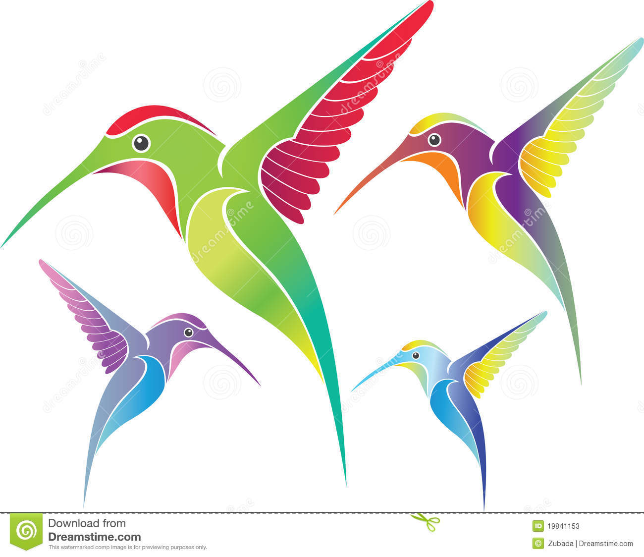 colorful colibri stock photos image 19841153 hummingbird clipart black and white free hummingbird clip art free