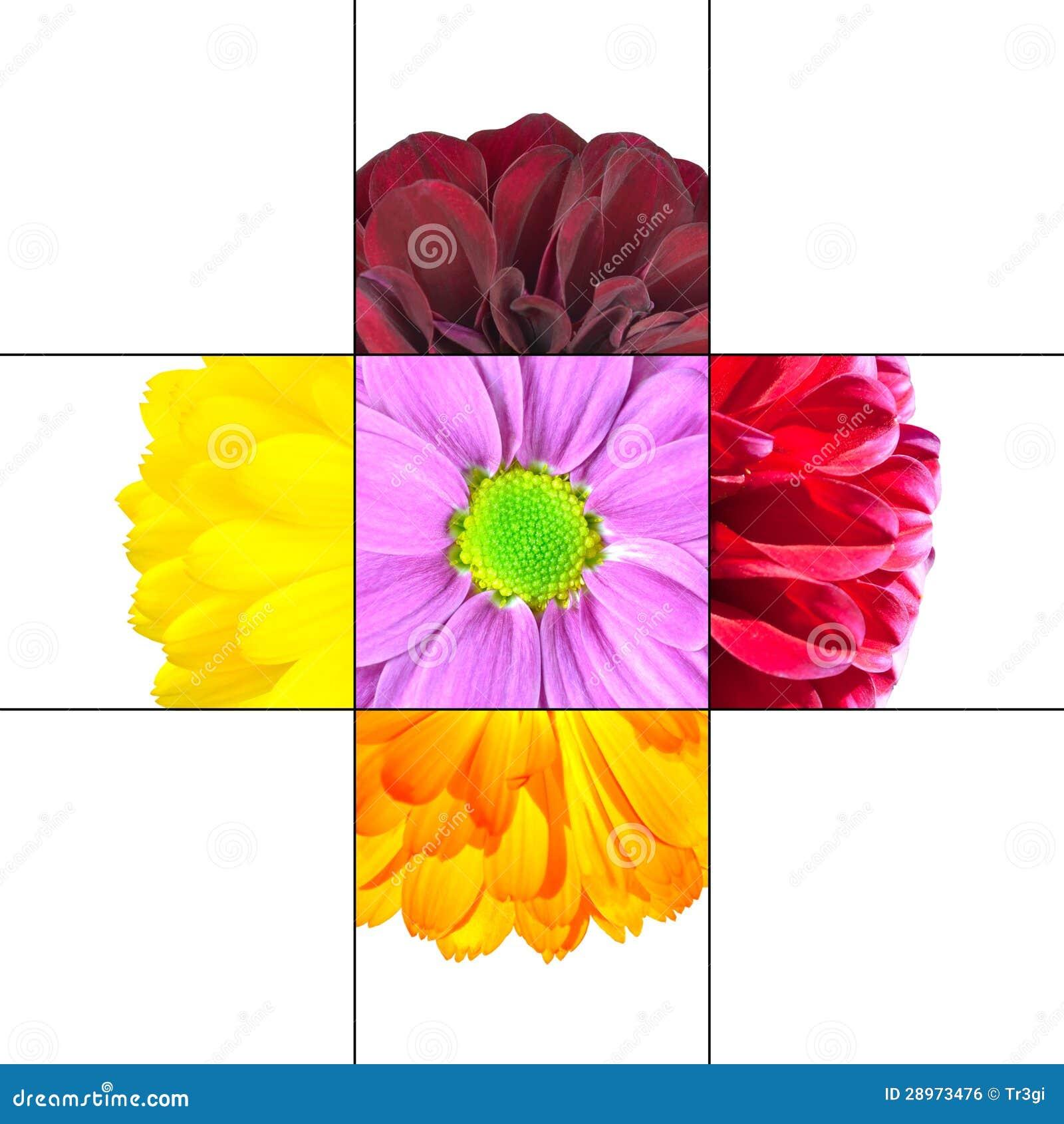 Colorful Daisy Flower Mosaic Design Stock Illustration
