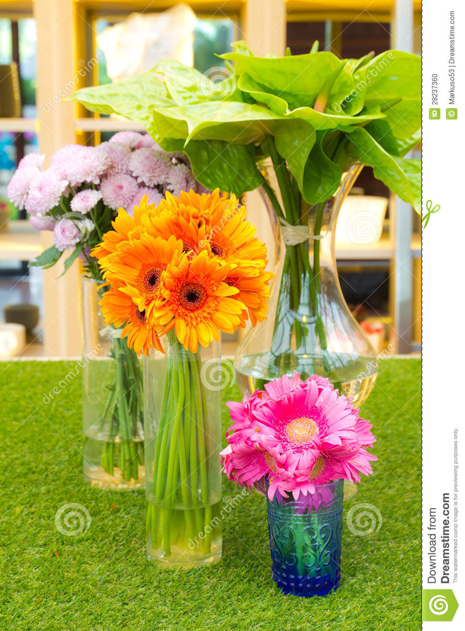 Colorful Daisy Flower In Vase Stock Photo - Image of ...