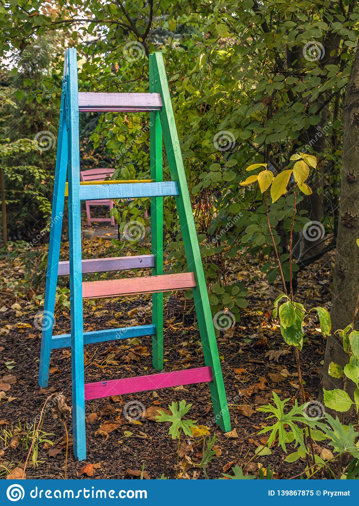 Colorful wooden ladder in the garden