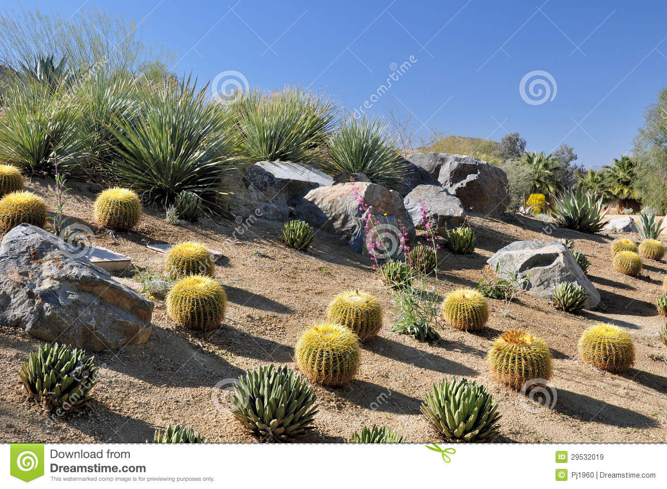 Colorful Desert Landscape Royalty Free Stock Images