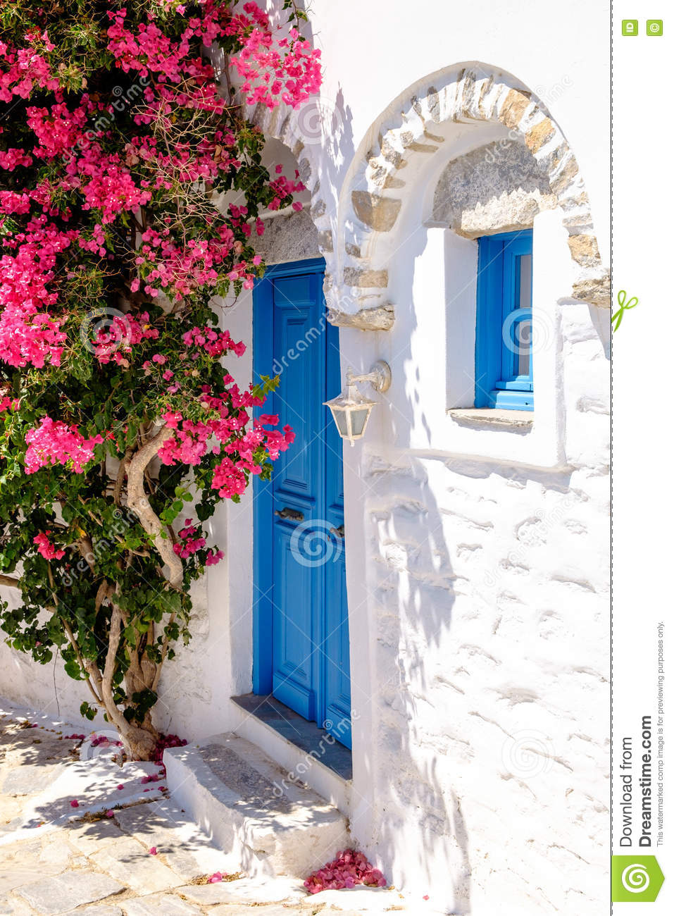 Colorful doors and flowers in white mediterranean street, Amorgo
