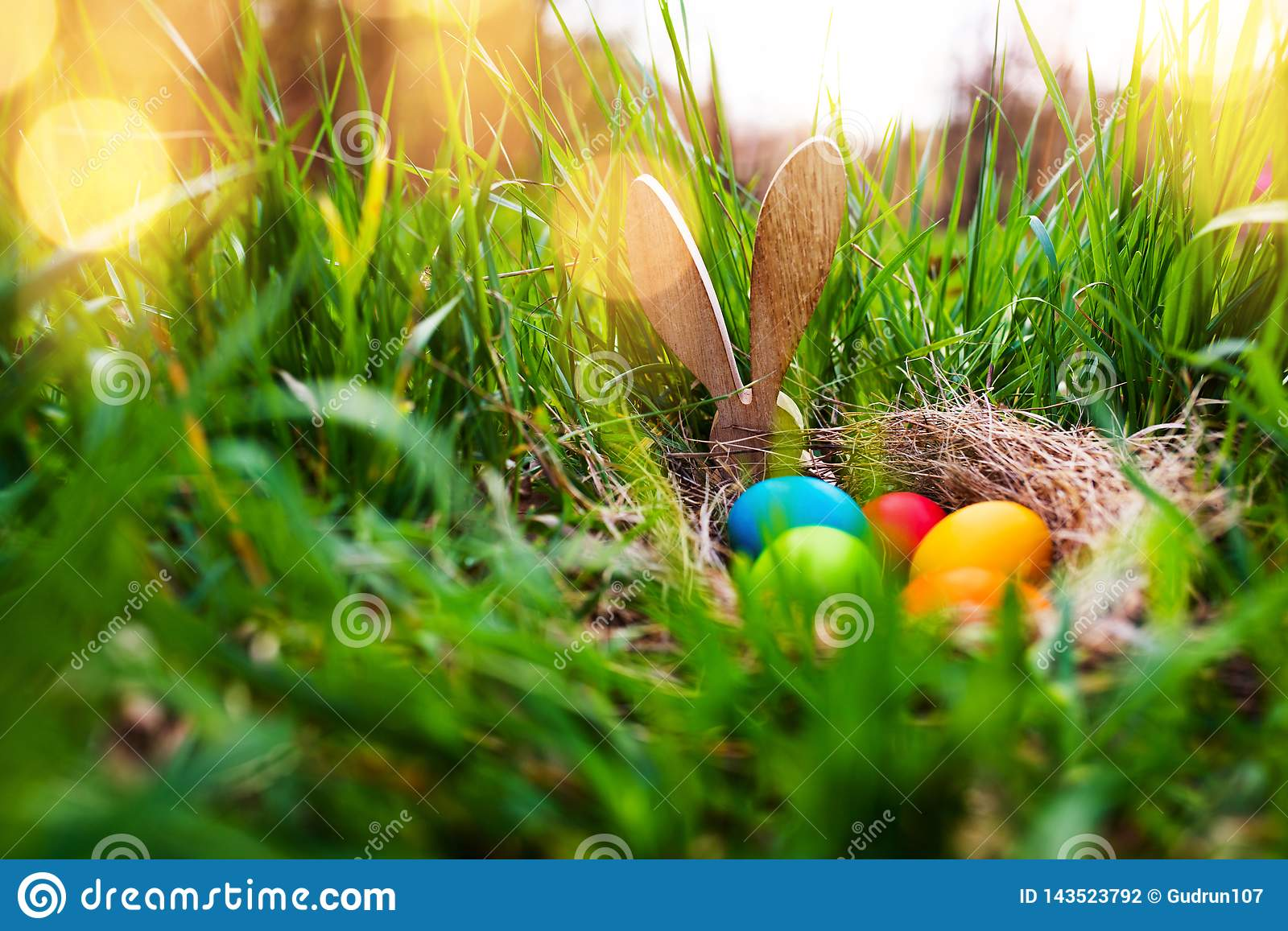 Easter eggs in a spring meadow