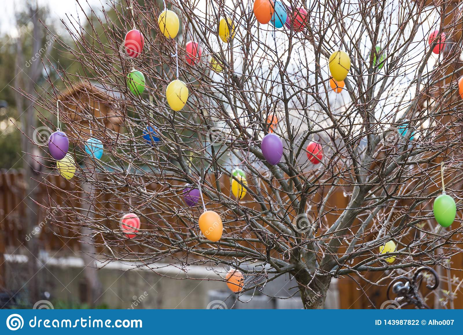 Colorful Easter Eggs On A Tree Stock Photo - Image of colourful