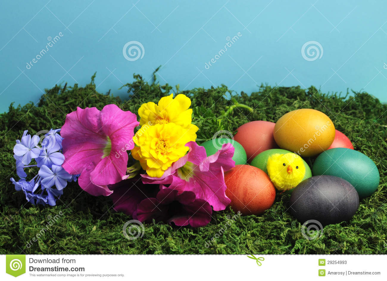 Colorful Easter Eggs With Yellow Chick And Pretty Flowers Stock