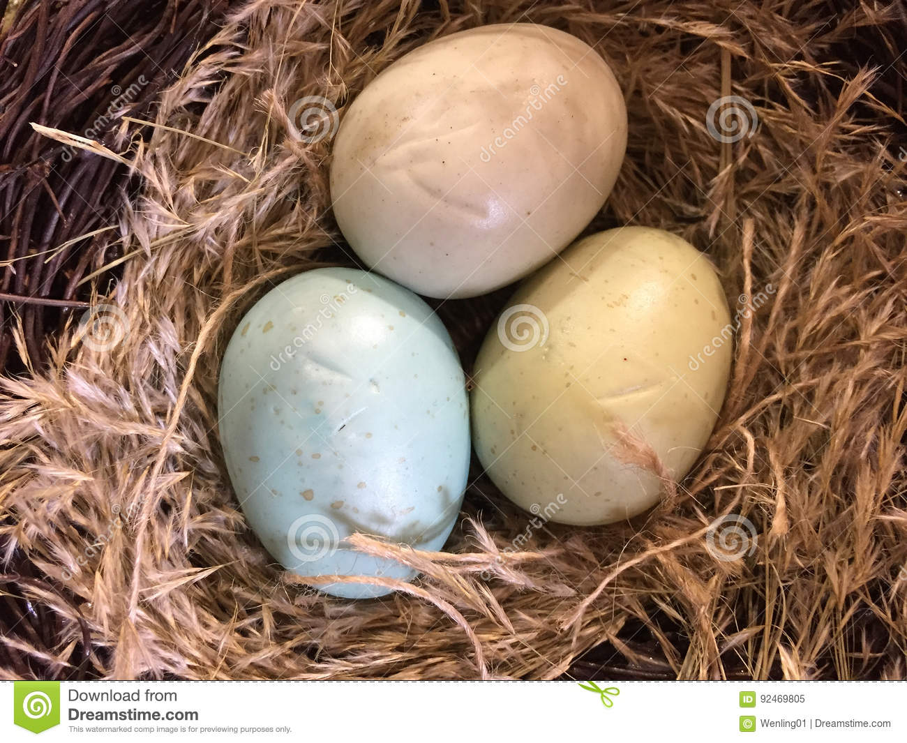 Colorful eggs in a nest