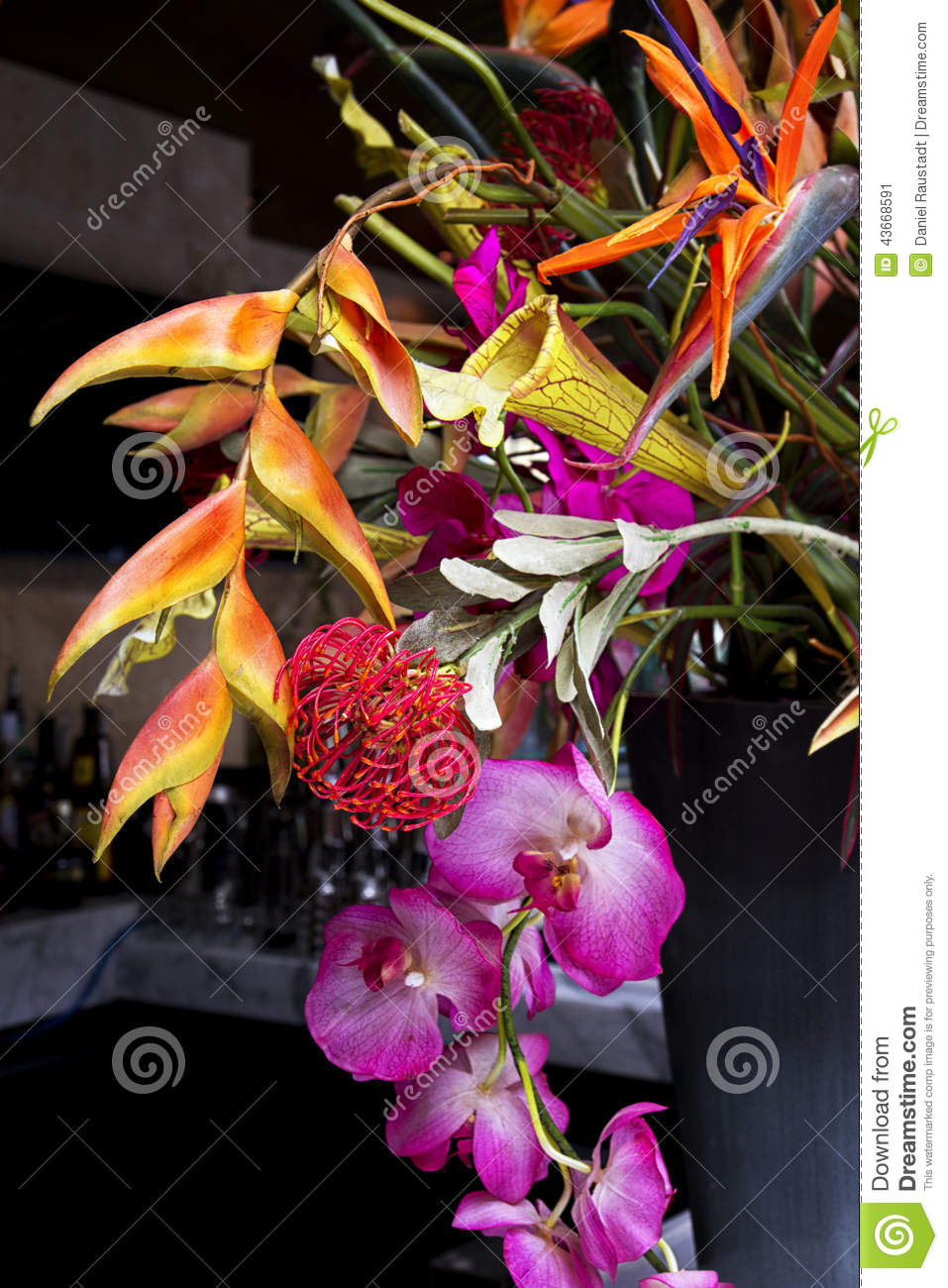colorful exotic floral arrangement stock photo  image, Beautiful flower