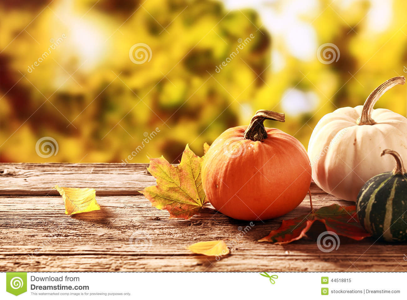 Colorful Fall Harvest Stock Photo Image 44518815