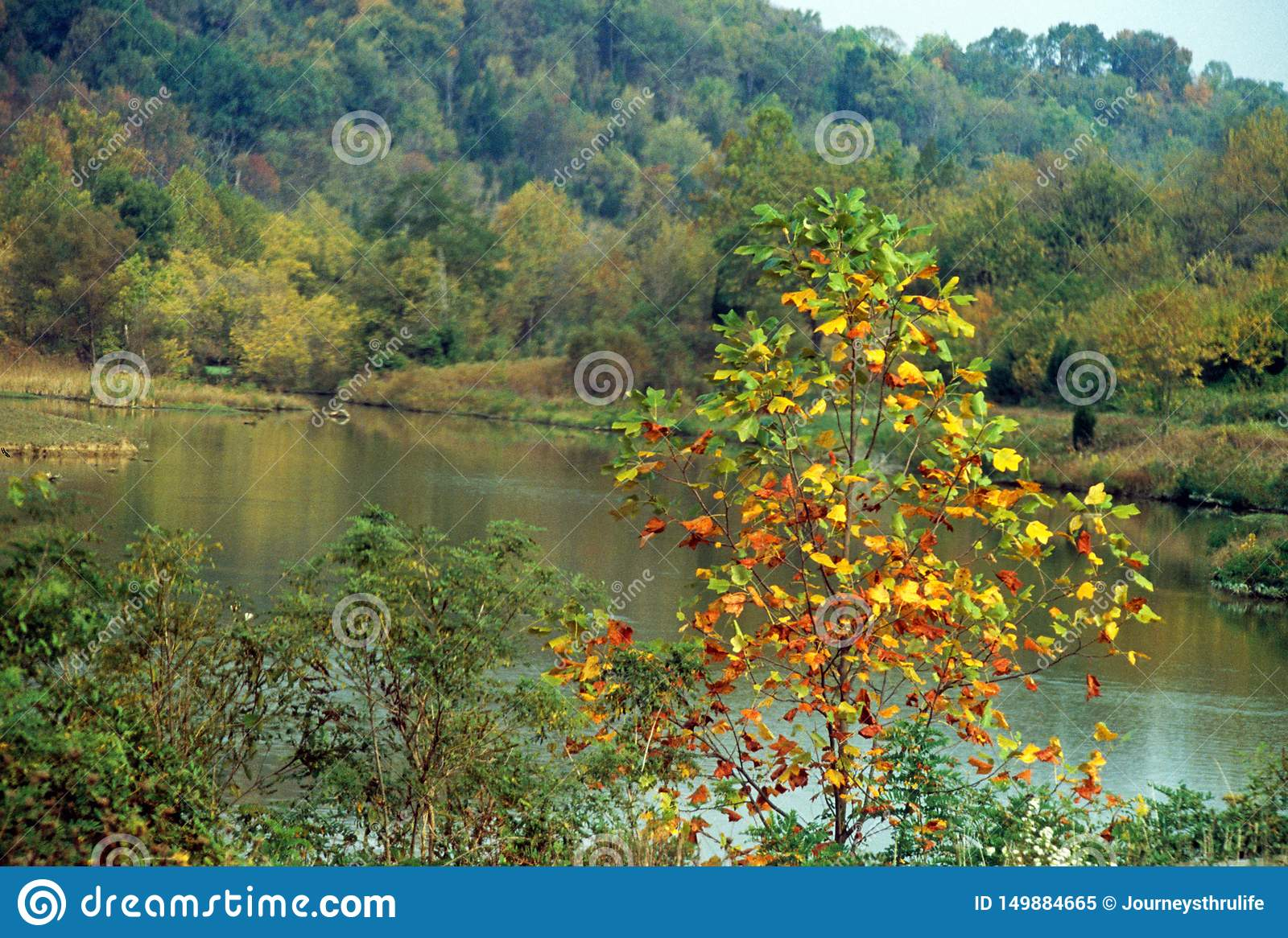 Midwestern autumn scene with colorful trees and a lake