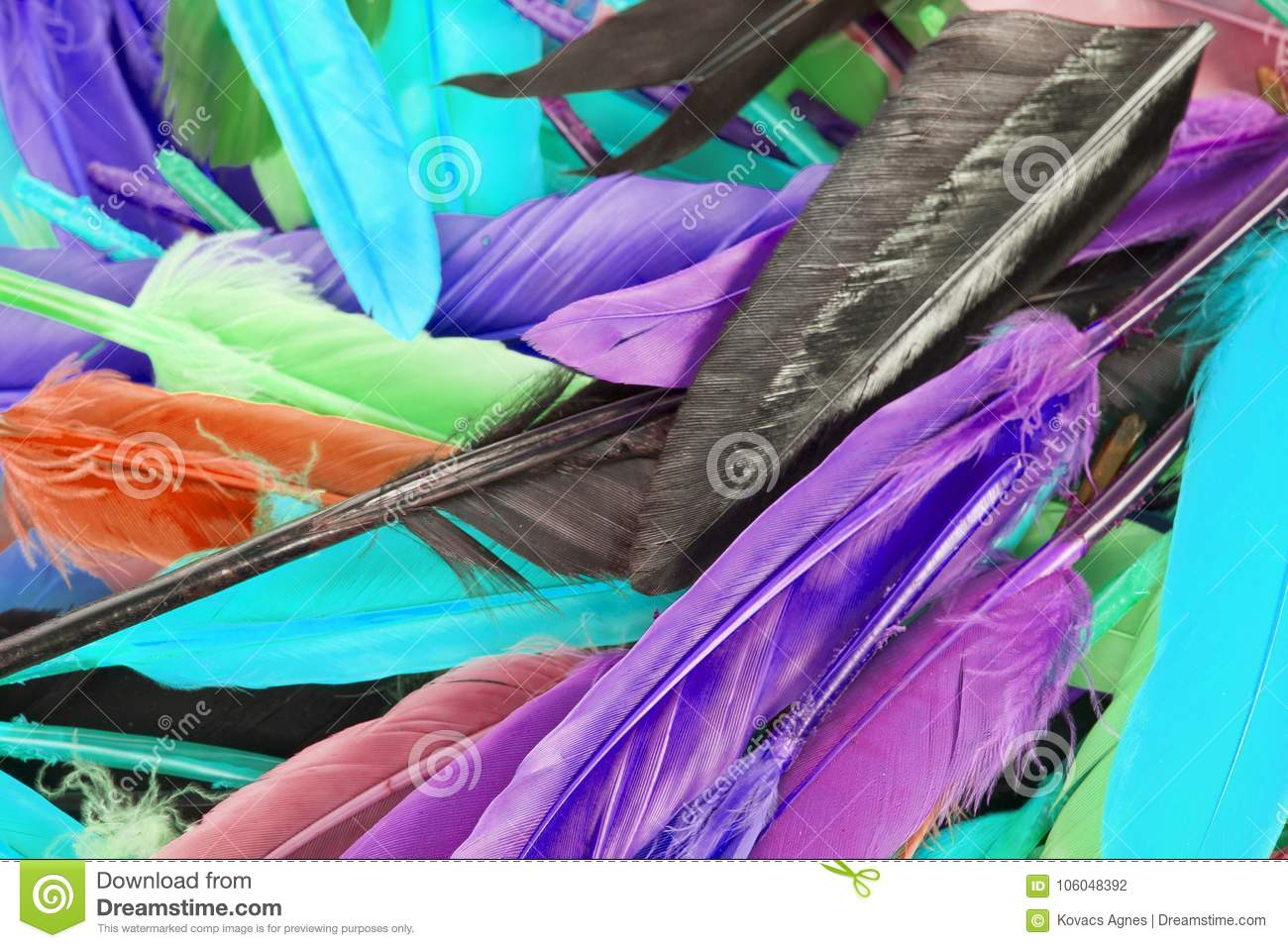 Colorful feather rainbow bird feathers. Goose dove duck parrot quill feathres... Rainbow colored background.