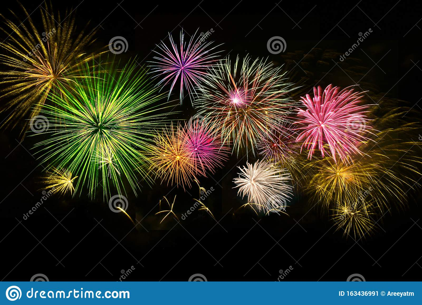 Colorful fireworks on midnight sky background