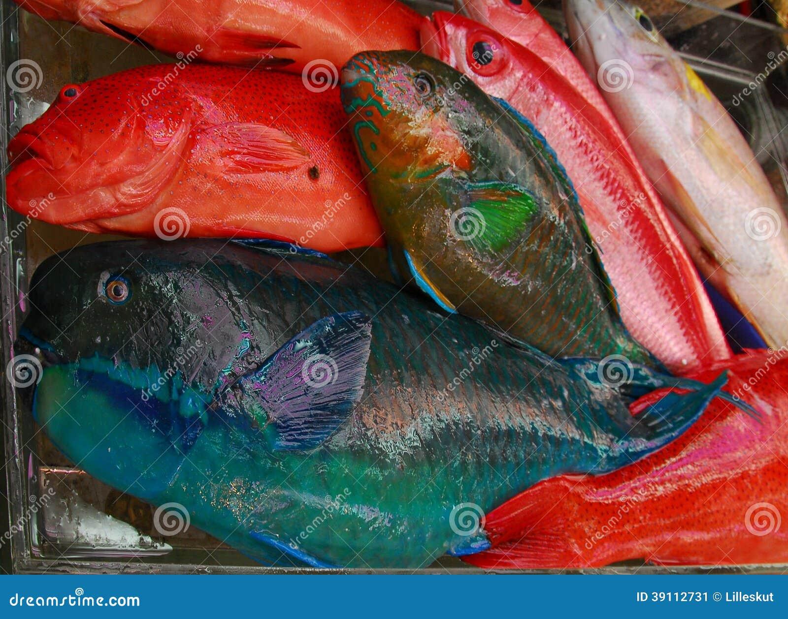 Colorful fish at market stock image. Image of eyes, asia - 39112731