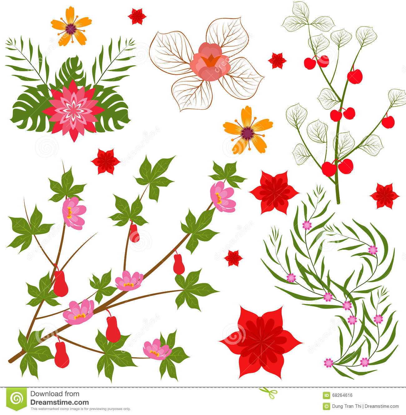 Colorful Floral Collection With Leaves And Flowers Spring Or Summer