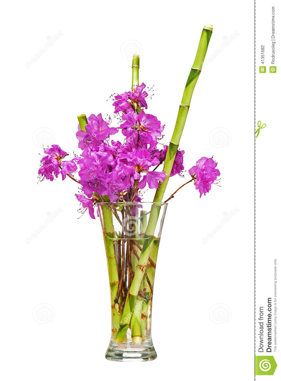 Colorful Flower Bouquet From Purple Rhododendron Flowers Stock Photo Image 41351682