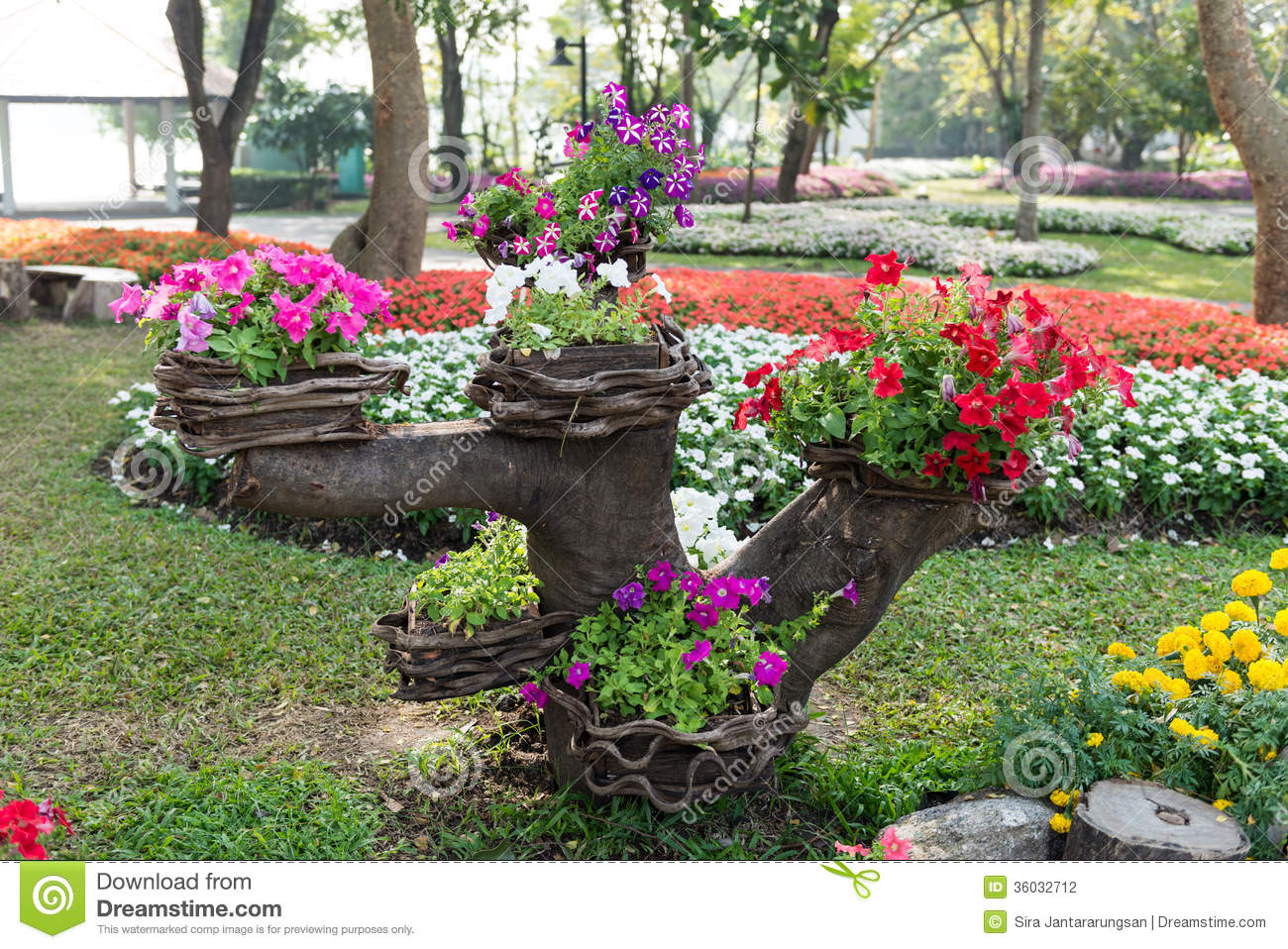 Colorful Flower Garden Background Stock Photo Image - Colorful flower garden background