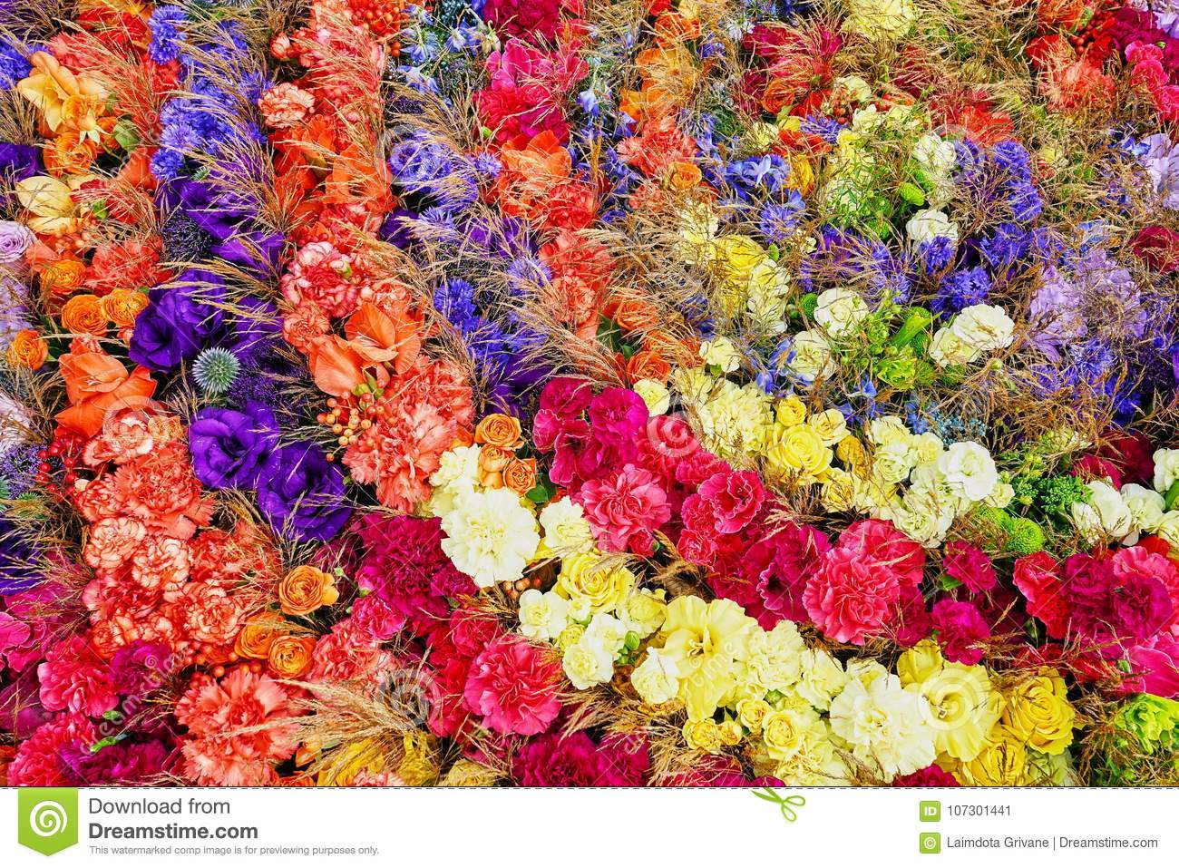 Colorful Flowers Background. Aster, Roses, Freesia Flowers, Top View ...