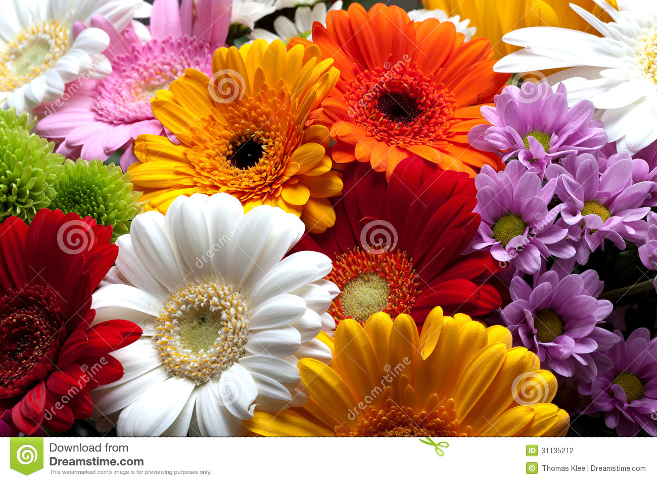 Colorful flowers blossom stock photo image of colors for What makes flowers different colors
