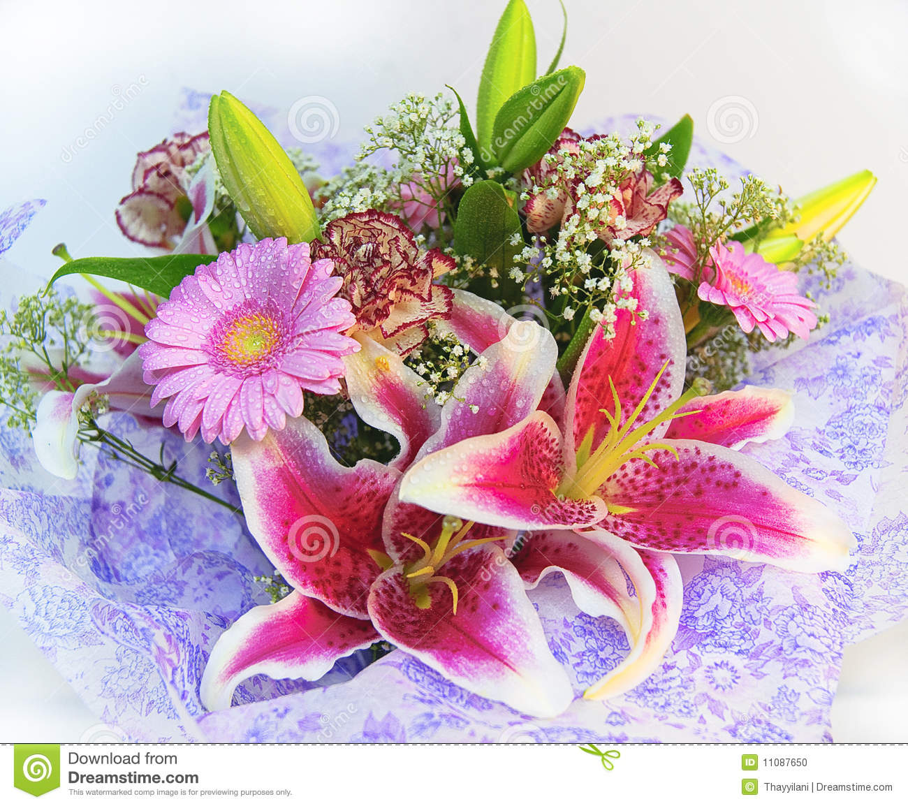 Colorful flowers bouquet stock photo. Image of brilliant - 11087650