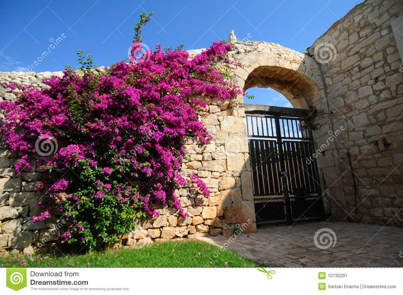 Colorful flowers on building