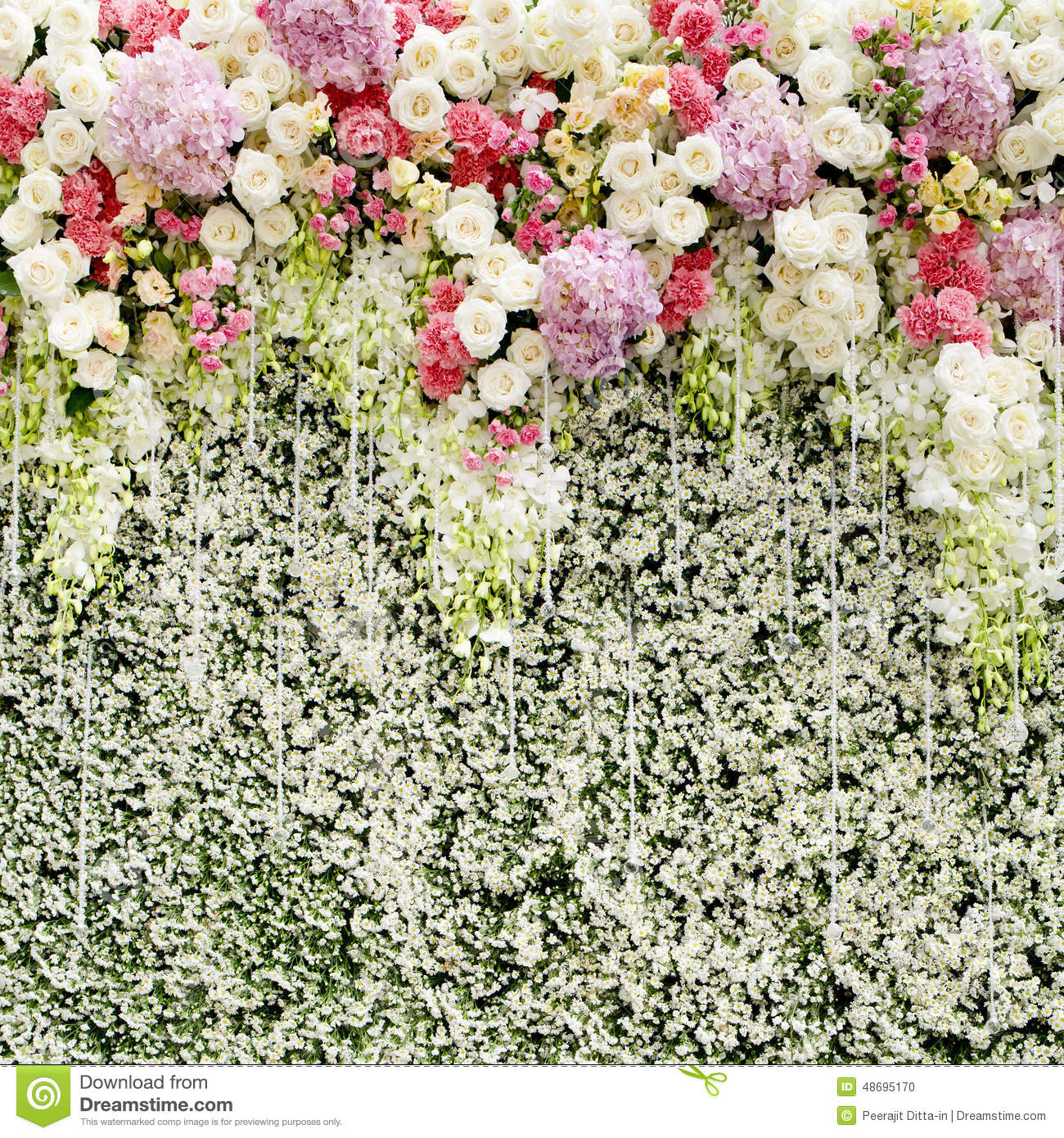 Colorful Flowers With Green Wall For Wedding Backdrop Stock Image 48