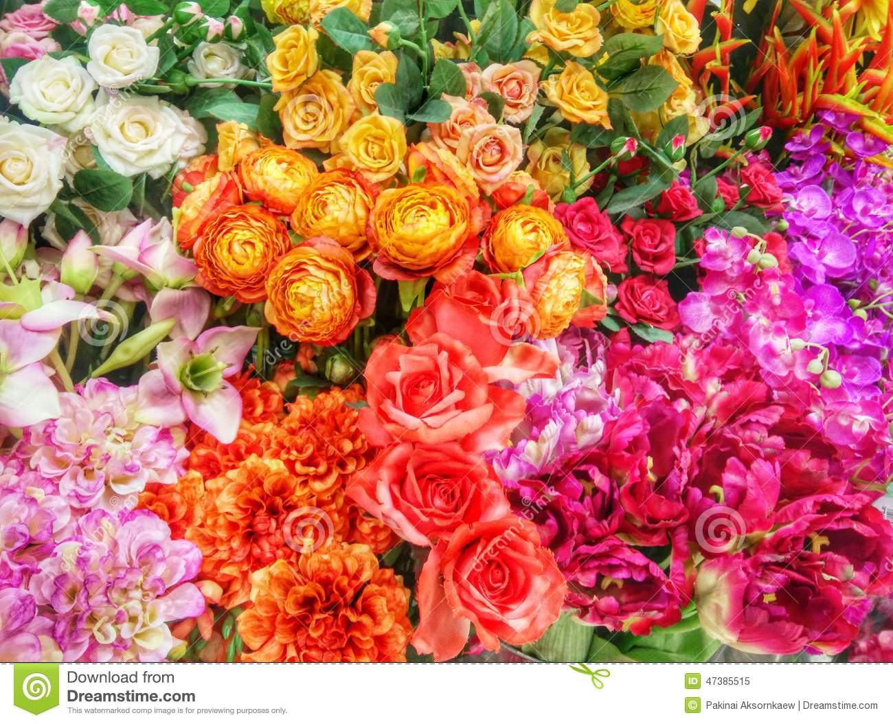 Colorful flowers stock image. Image of colorful, types - 47385515