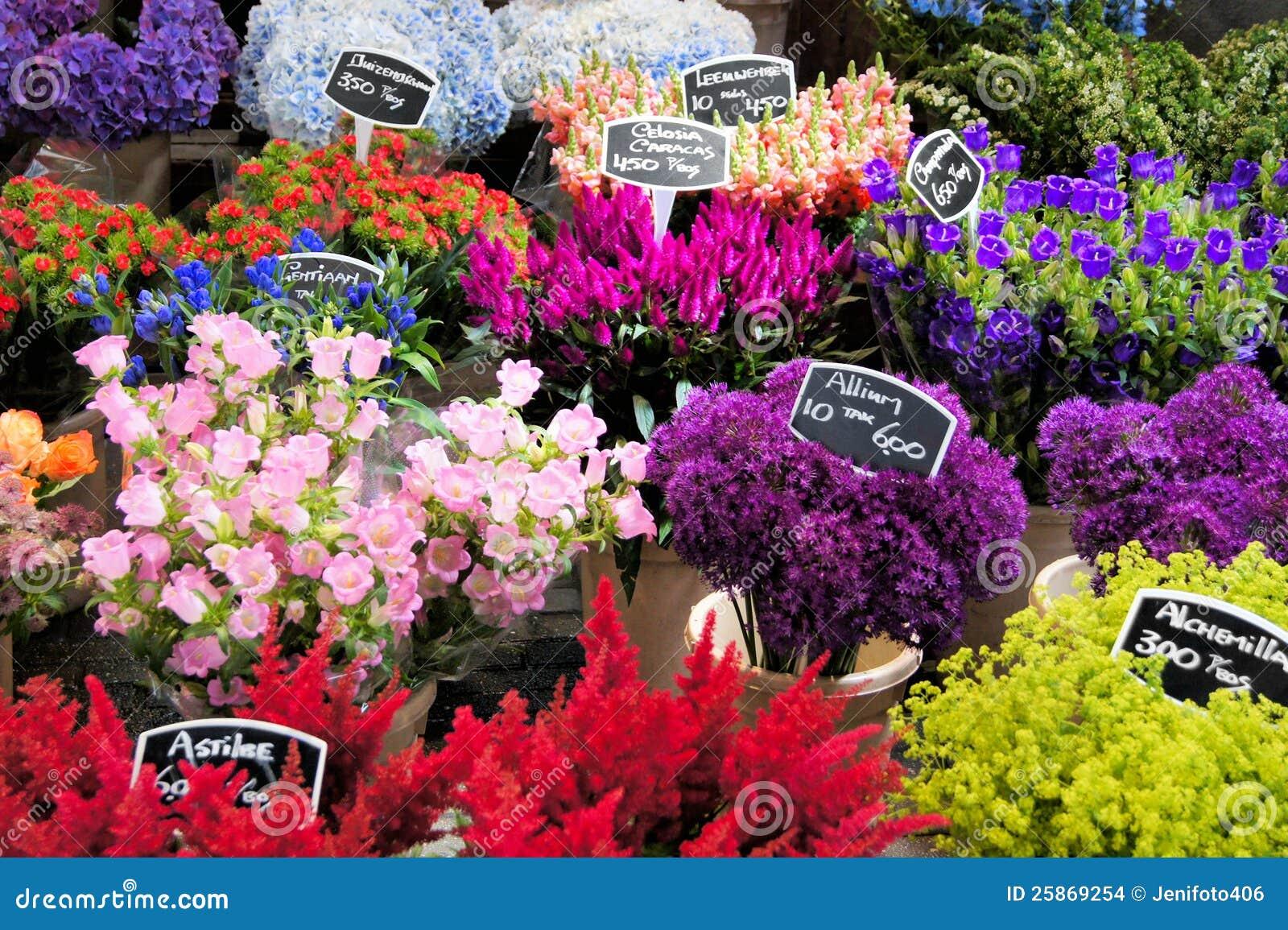 the dutch flower cluster