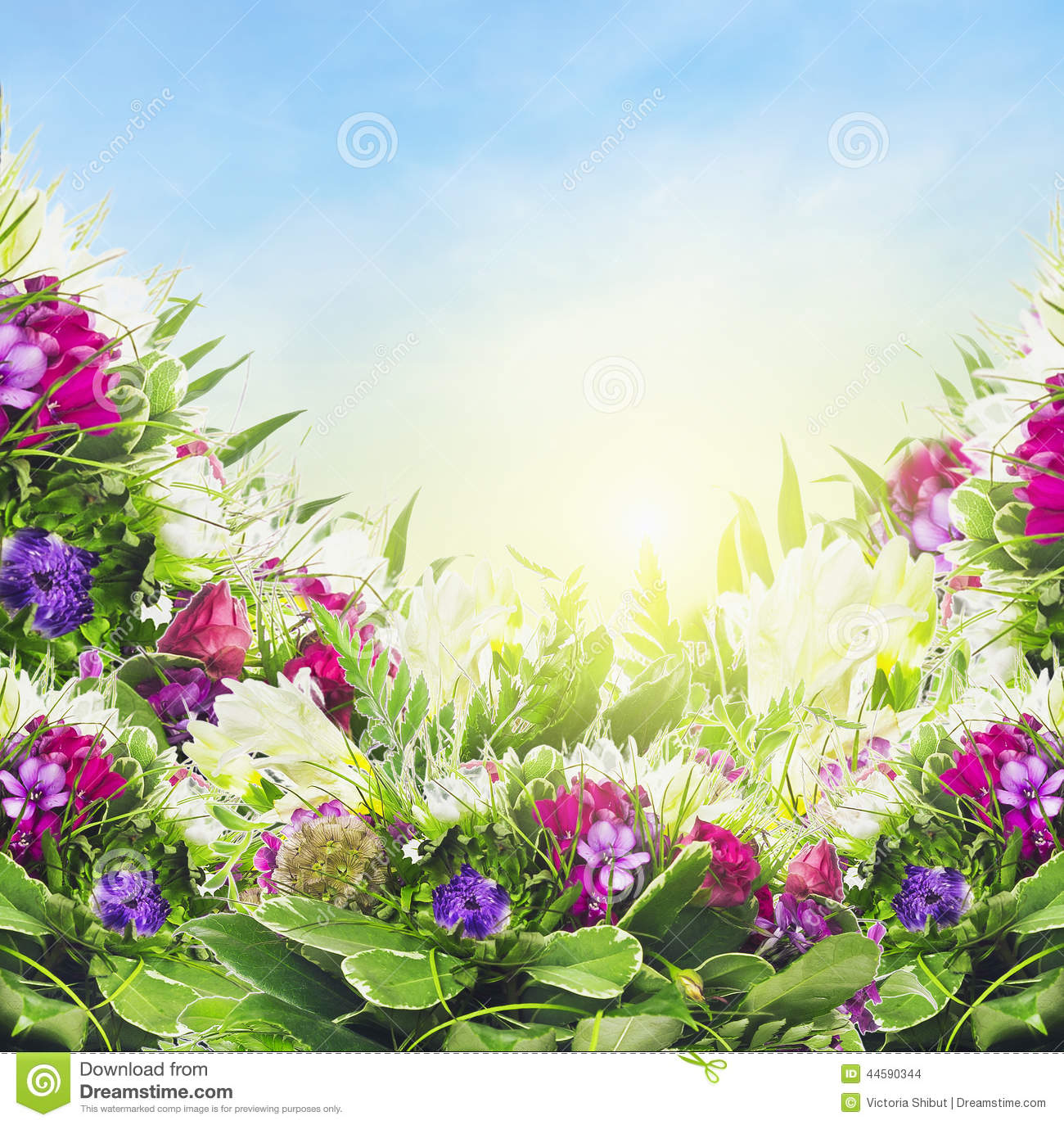 Colorful Flowers On Sky Background Floral Border Stock