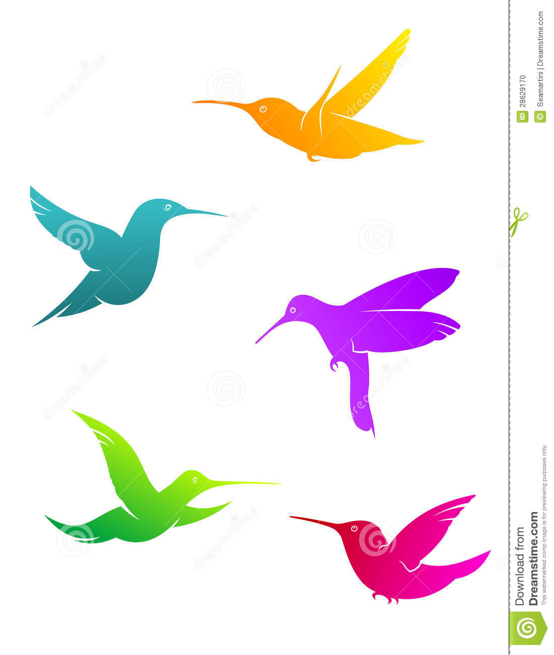 Colorful hummingbirds flying - photo#15