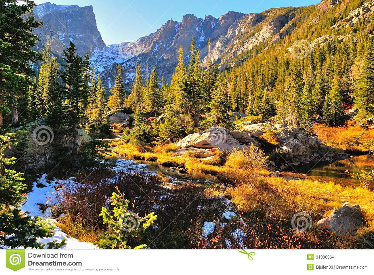 Colorful Forest In Rocky Mountain National Park Stock