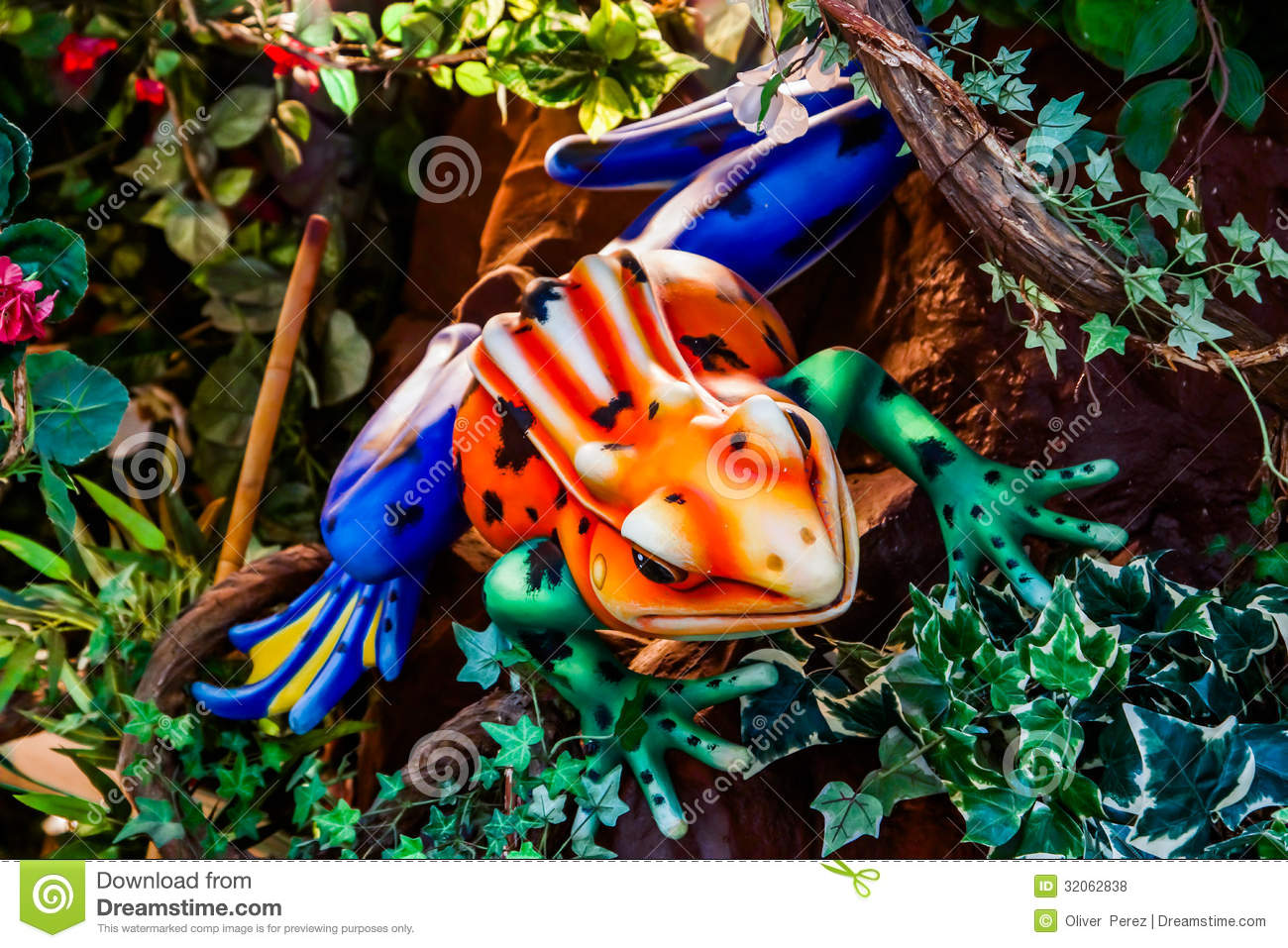 Colorful Frog Royalty Free Stock Photos - Image: 32062838